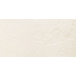 Blinds white STR 29,8x59,8 sienų plytelė