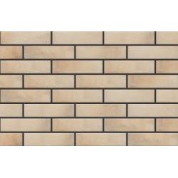 Retro Brick salt 6,5x24,5 klinkerinė plytelė