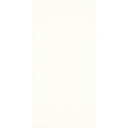 Grace bianco 29,5x59,5 sienų plytelė