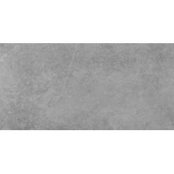 Tacoma silver 59,7x119,7 grindų plytelė