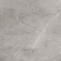 Remos grey mat 59,8x59,8 grindų plytelė