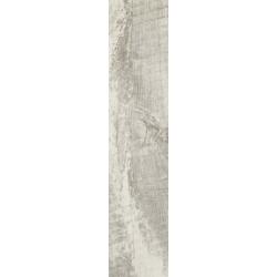 Trophy bianco 21,5x98,5 grindų plytelė