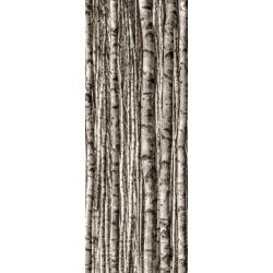 Epoxy Birch 4x89,8x59,8 plytelė dekoratyvinė
