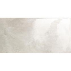 Epoxy grey-1 119,8x59,8 grindų plytelė