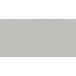 Industrio grey mat 119,8x59,8 grindų plytelė
