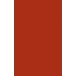 Veo rosso 25x40 sienų plytelė