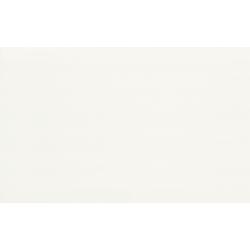 PS201 white 25x40 sienų plytelė