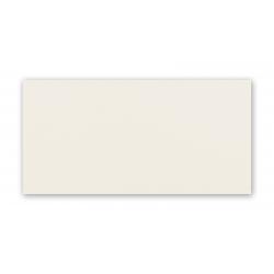 Blanca white  29,8x59,8  sienų plytelė