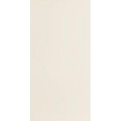 Modern pearl beige 29.8X59.8  sienų plytelė