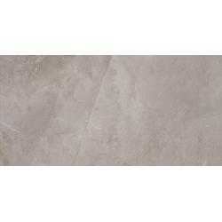Muse Silver 59,8x29,8  sienų plytelė