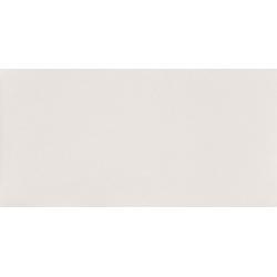 Reflection White 29,8x59,8  sienų plytelė