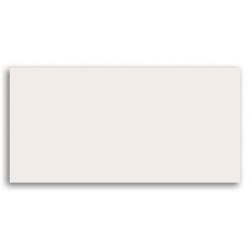 Oxford White 59,8x29,8  sienų plytelė