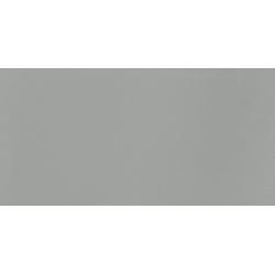 Satini grey 29,8 x 59,8  sienų plytelė