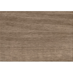 Karyntia brown 25,0 x 36,0  sienų plytelė