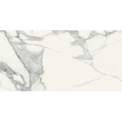 Specchio Carrara POL 119,8 x 59,8  universali plytelė