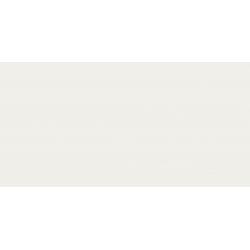 Colori white 59,8 x 29,8  sienų plytelė