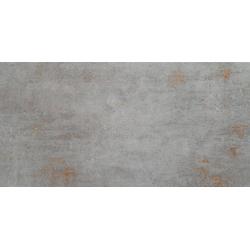 Ferrum grey 29,8x59,8  sienų plytelė