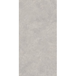 Lightstone Grey Gres Szkl. Rekt. Mat. 59.8 x 119.8 universali plytelė