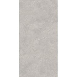 Lightstone Grey Gres Szkl. Rekt. Półpoler 59.8 x 119.8 universali plytelė