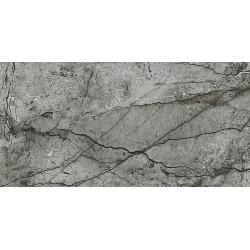 Essential Grey Polished  59,8 x 119,8 universali plytelė