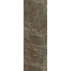 Stone Matter Brown Ściana Rekt. Połysk  29.8 x 89.8 sienų plytelė