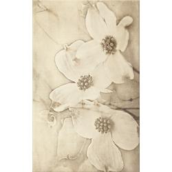 Tuti Flower 25x40 plytelė dekoratyvinė
