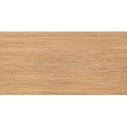 Brika Wood 22,3x44,8 sienų plytelė