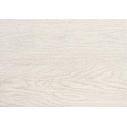 Inverno white 25x36 sienų plytelė